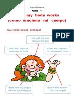 How My Body Works