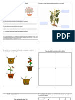 """Guia de Ciencias 3° básico """"Las plantas"""""""