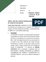 MEDIDA CAUTELAR.docx