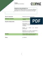 TDR, Actualización Del Mapa Interactivo de Licencias Mineras e Hidroeléctricas en Guatemala de La Asociación Comisión Paz y Ecología.