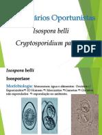 Cystoisospora e Cryptosporidium