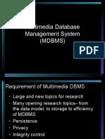 Multimediadbsystem 150402121017 Conversion Gate01