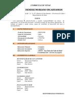Curriculum Vitae - Denisse