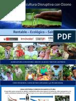 INKAOZONO Ozono en Agricultura Perú 2019