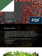 Perdida de Biodiversidadm- Final
