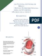 esclera