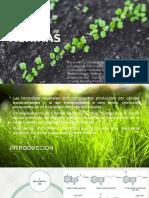Biotecnología Vegetal - Auxinas