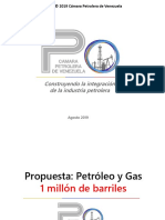 Presentacion Cpv p y VP 082019