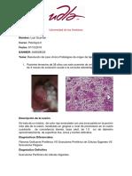 patologia 3