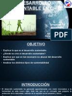 Desarrollo Sustentable Ignacio Bruna Diego Oyarzún