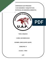 TRABAJO DE ARQUEAS UAP.docx