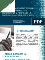 1. Estructura Organizacional y Perfil de Enfermera Administradora EMG