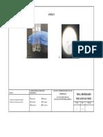 Anexo-bioquimica (1) Informe 1