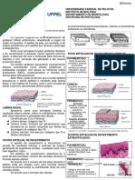 Resumo Tecido Epitelial e Glandular 1