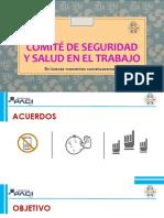 comite de seguridad y salud en el trabajo - ELECCIONES CSST.pptx