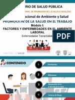 PROMOCION MODULO I.pdf