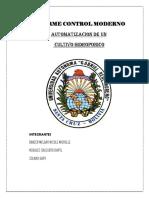 INFORME INCOMPLETO-1.docx