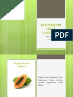Fitoterapi Gastritis