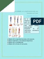 CLASIFICACION DE LAS PAUSAS ACTIVAS.docx