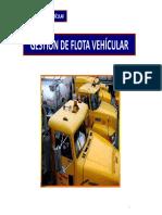 Gestion de Flota Vehicular