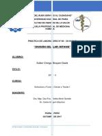 Informe 8 - División Celular - Mitosis