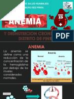 Anemia y Desnutricion Cronica