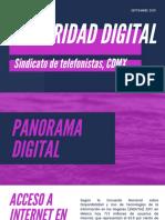 Seguridad Digital STRM 2019