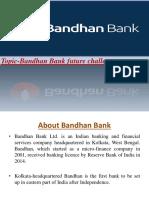 328990642-bandhan-bank-mba-ppt.pptx