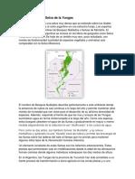 Descripción de La Selva de La Yungas