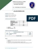 GUIA INTRODUCTORIA.docx