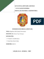 INFORME-SEGURIDAD ALIMENTARIA.docx