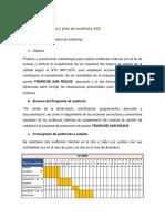 Programa y plan de auditoria AA2.docx