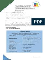 INFORME 001 DE JULIO INGRID (2).docx