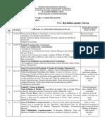 Plan de Evaluacion Lenguaje y Comunicacion Cinu Lapso 2019-II(1)