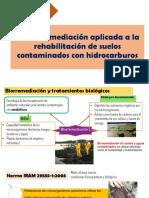 CAPÍTULO-8-remediacion
