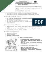 1 PRUEBA SABER CIENCIAS.doc