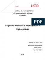 Trabajo final (Seminario de profundizacion 1).docx