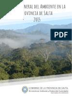 informe_ambiental_2015