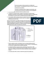 biomecanica del hueso.docx