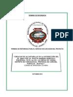 Tdr - Servicio Ejecucion Alcantarilla
