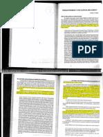 Cattani-Toxicos prohibidos y afectacion del bien juridico