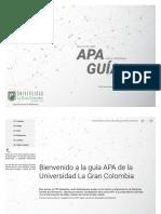 Interactive APA Guide