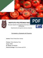 Deshidraciòn de Tomates