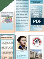 Brochur Paula