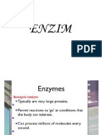 ENZIM UIN