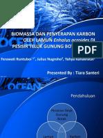 Tiara Santeri (20012681822006) - Tugas Pak Zia