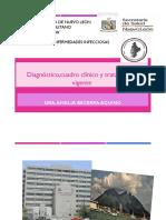 TratamientoVigenteBrucelosisAlternativas.pdf