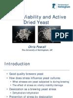 Yeast Stress