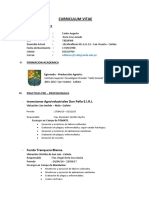 modelo-de-curriculum-vitae.docx