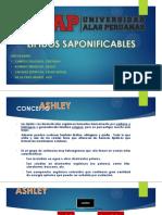 Quimica Organica 3 Lipidos (1)